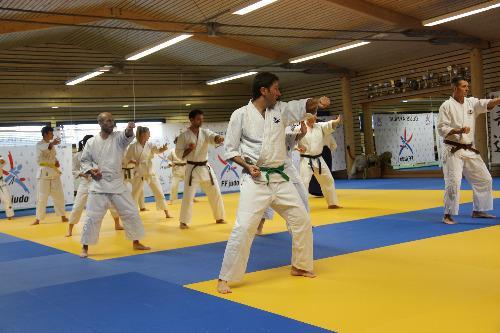 Happoken kata à Viuz en Sallaz octobre 2016