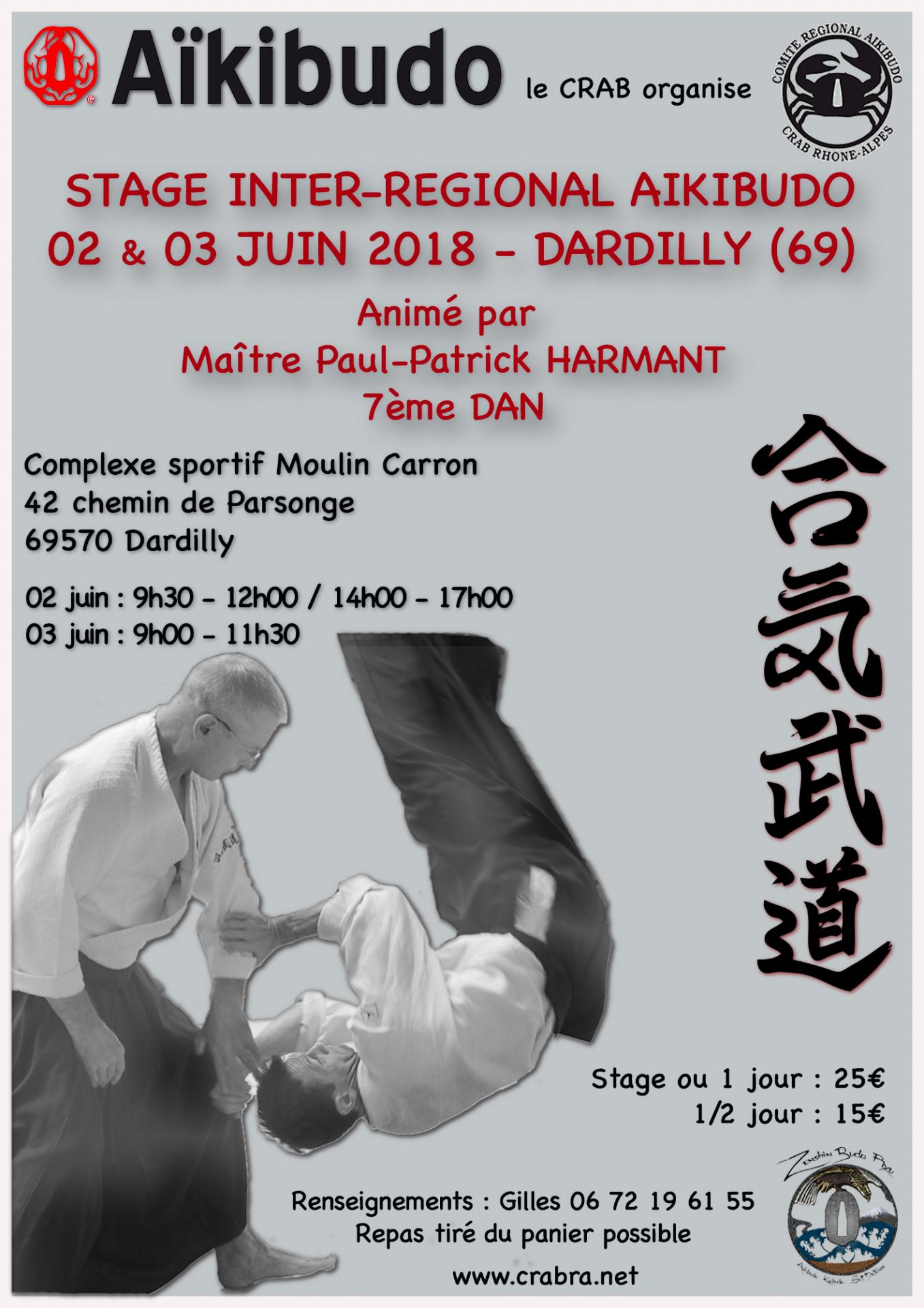 Stageaikibudodardilly 2018 06 0203